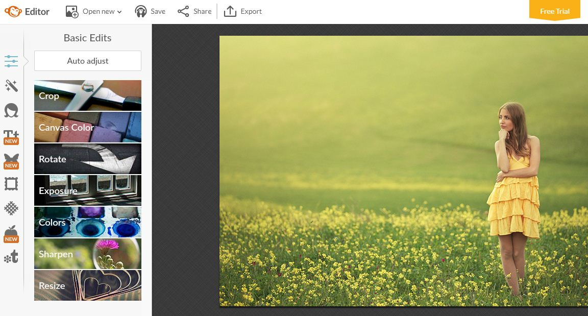 picmoney online photo editing tool