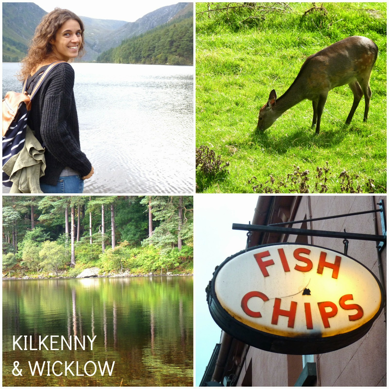 Kilkenny - Wicklow Irlanda