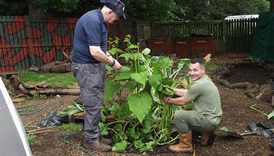 Gardening leave