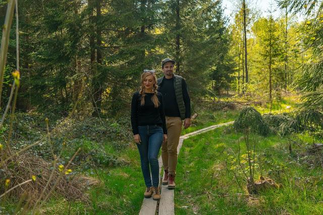 Premiumwanderweg - Traumschleife Burgstadt-Pfad – Kastellaun | Kyrill-Sturmwurferlebnispfad | Wandern-Hunsrück 01