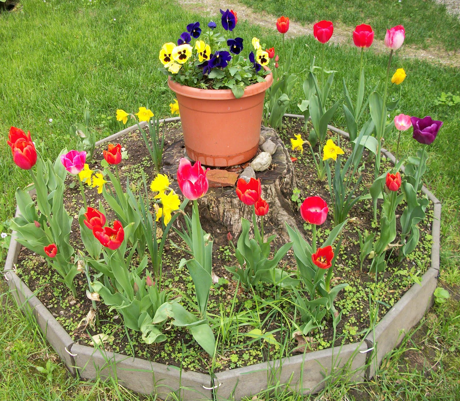 Small Round Flower Garden Brings Color And Variety