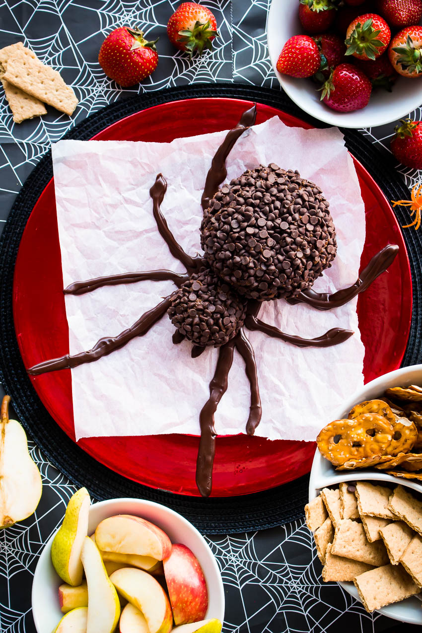 A Spooky Spider Chocolate Cheese Ball will be the hit of your Halloween party!  This festive, easy to make, spider-shaped cheese ball is made with cream cheese, peanut butter, and lots of chocolate chips. #Halloween #cheeseball #dessert