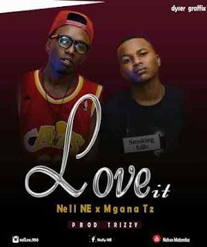 Download Mp3 | Nelly NE ft Mgana TZ - Love It