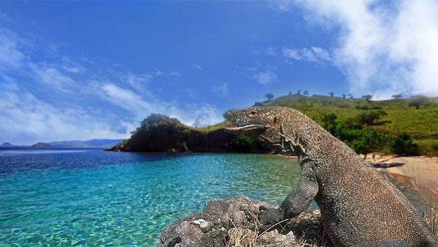 Daftar 50 Taman Nasional di Indonesia