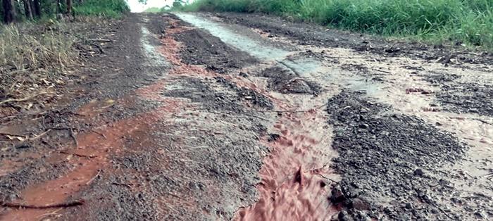 Nova Cantu: Internautas usam redes sociais para reclamar da situação de estrada rural