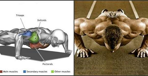Learn How To Do 100 Pushups In A Row   ! - Fitness Tips Lovers