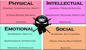 physical intellectual emotional social