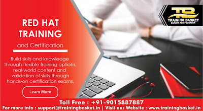 6 months radhat linux training companies in noida