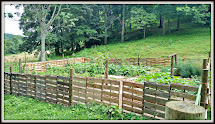 Two Bears Farm And Three Cubs Pallet Garden Fence