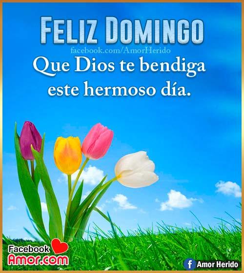 feliz domingo dios te bendiga