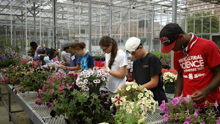 youth in greenhouse looking at flowers