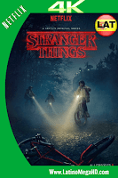 Stranger Things Temporada 1 (2016) Latino Ultra HD 4K 2160P - 2016