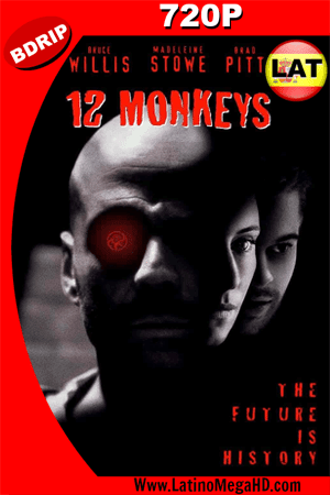 12 Monos (1995) Latino HD BDRIP 720P (1995)