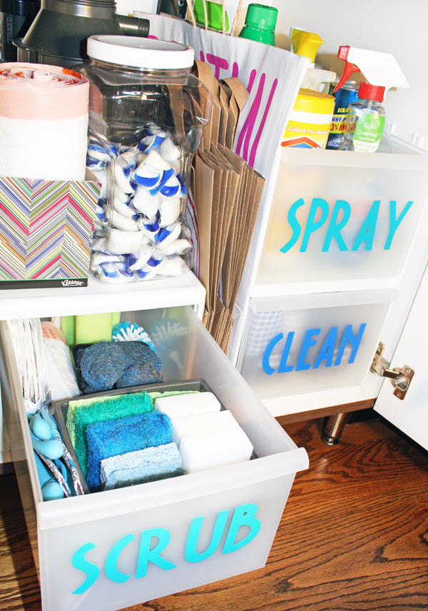 Under Sink Organization Ideas