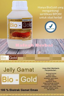 Obat herbal penyakit rematik gamat bio gold murah di hafzah herbal