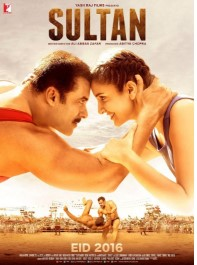 Sultan (2016) Hindi NR-DVDRip 700MB