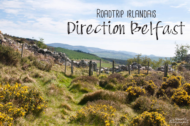 Roadtrip en Irlande du Nord - Direction Belfast