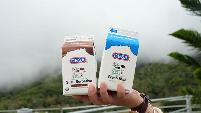 susu segar dairy farm. Ini susu yang sudah di pasture.