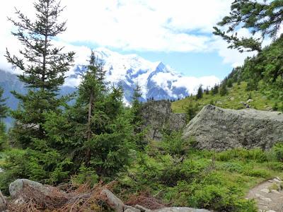 フレジェールからプランプラまでツール・ド・モンブランの一部を犬とハイキング