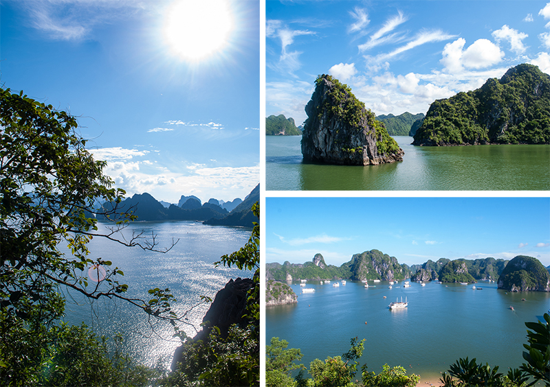 perfect view of the whole ha long bay vietnam