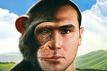 Resultado de imagen para mono hombre evolucion
