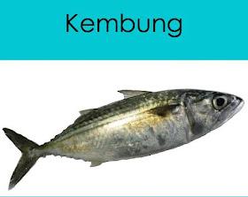 Balebete Baunajuku Mengenal Nama Nama Ikan Yang Umum Di Pasar