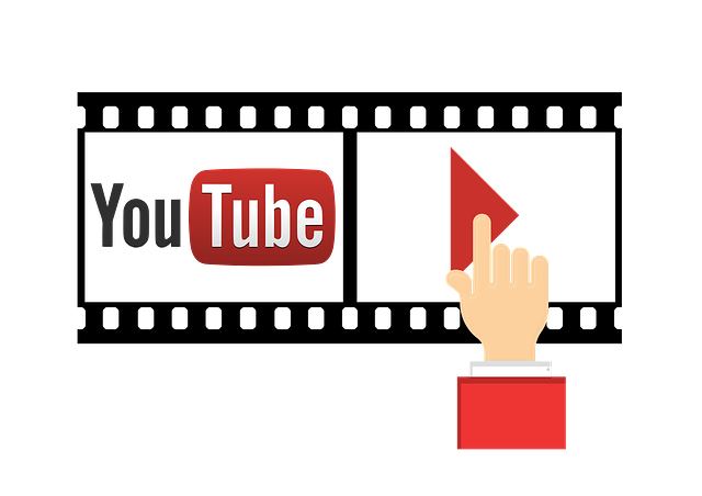 Como Descargar los Videos de Youtube