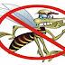 Acre já tem 453 casos de dengue, zika vírus e febre chikungunya sob investigação