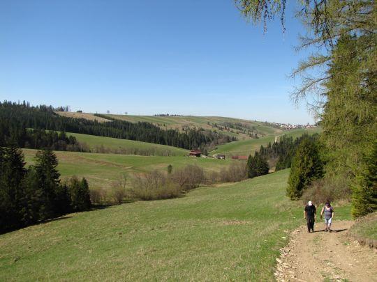 Widok z drogi na Jurgowskie Hale. W głębi po prawej widać zabudowania Dursztyna