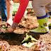 Δημιουργία σχολικού βιολογικού λαχανόκηπου στον Δήμο Ξάνθης