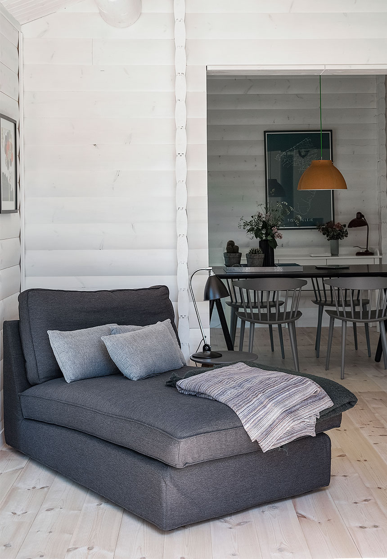 inside of a log cabin, scandinavian interior design, black and white, gray sofa,