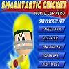 Play Smash Tastic cricket game