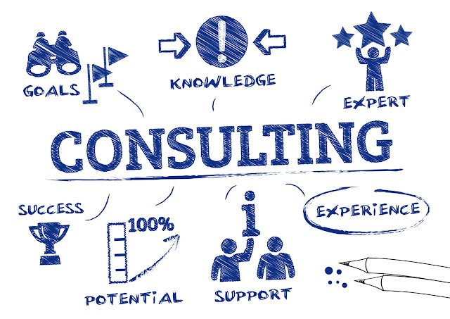 Industry consultants