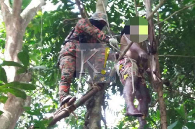 Lelaki Hilang Ditemui Mati Tergantung Atas Pokok