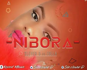 Download Audio | Clever D ft Tolla - Ni Bora