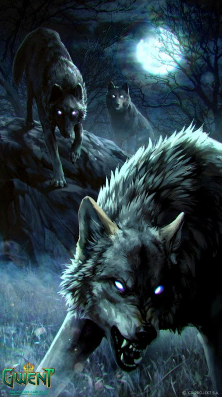 wolves wallpaper wallpapers themes