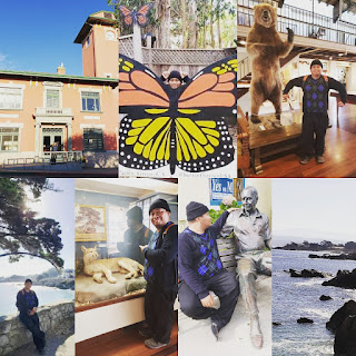 A photo-mosaic of my Pacific Grove visit