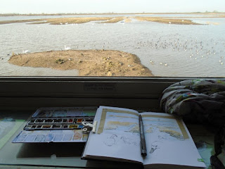 Sketching from the main hide