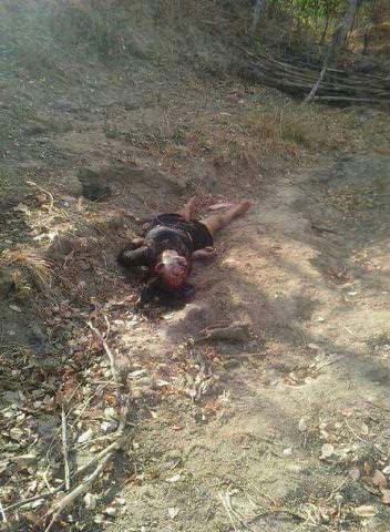 Mulher é encontrada morta em estrada
