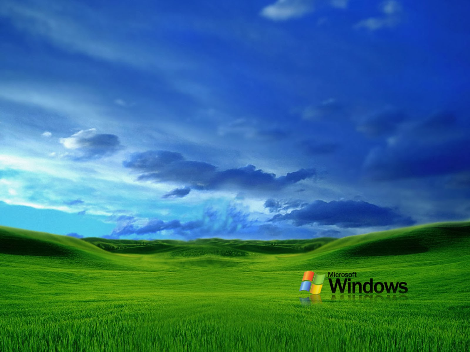 wallpapers: Grass Windows XP Wallpapers