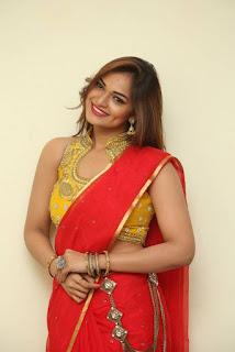 Actress Ashwini Po Shoot Stills In Red Saree With Golden Choli (18).jpg