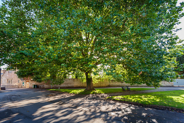 Village green in Bampton Oxfordshire by Martyn Ferry Photography