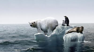 Küresel ısınmanın nedenleri