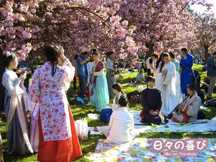 pique-nique hanami 2015 03