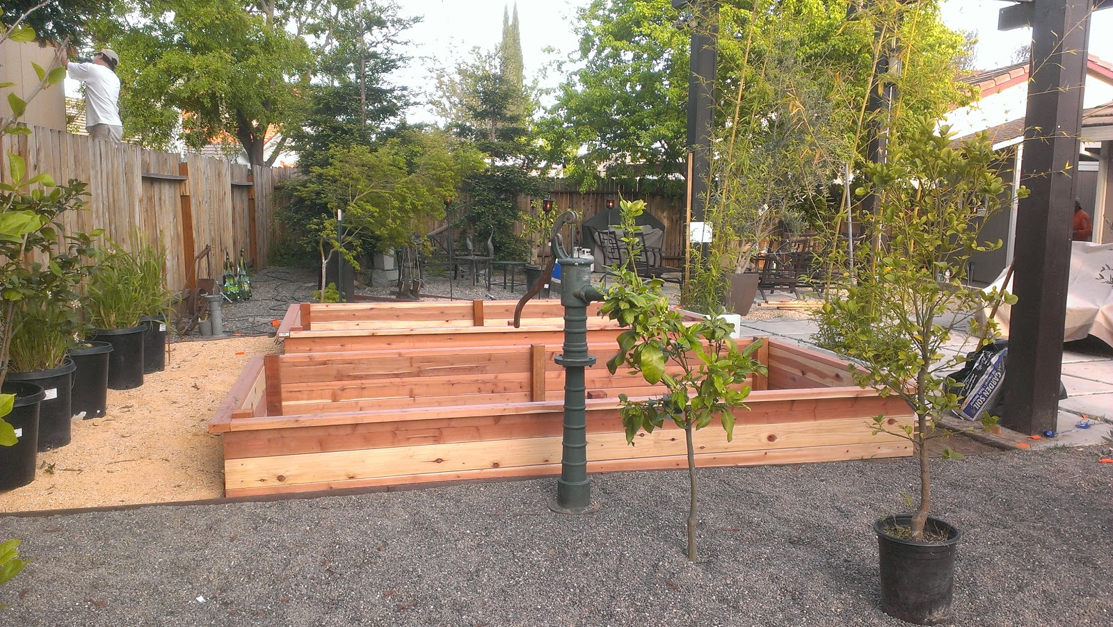 Planter Box for Vegetable Garden ~ Fawnbrook Project