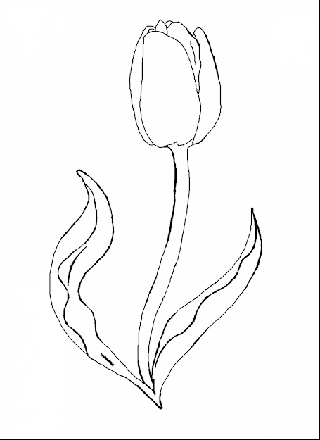 Magnificent Printable Tulips Flower Coloring Pages With Spring Flowers  Coloring Pages And Printable Spring Flowers Coloring