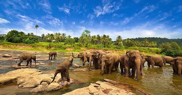 Lampung the Treasure of Sumatra