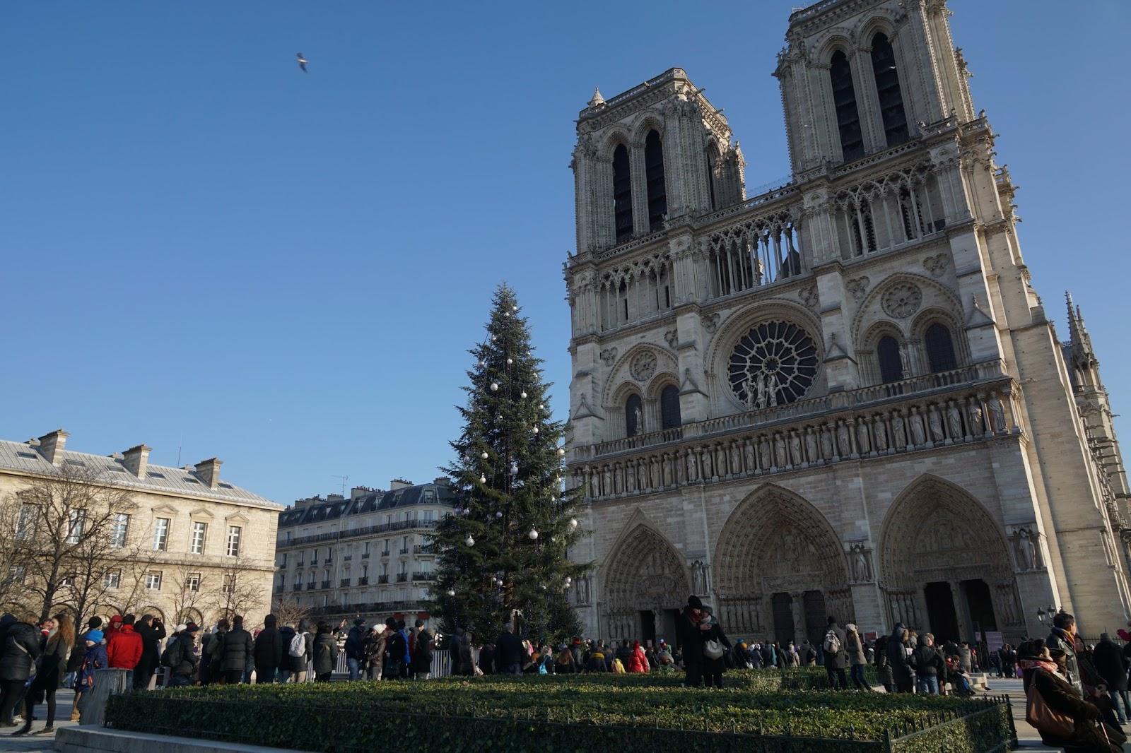 パリのノートルダム大聖堂(Cathédrale Notre-Dame de Paris)