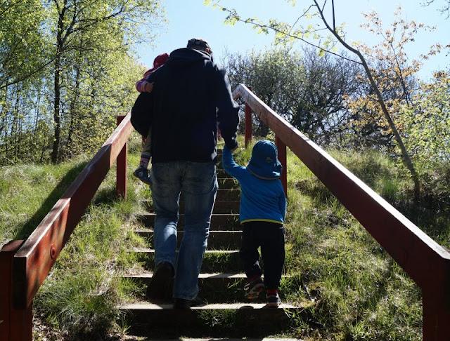 Aus unserem Dänemark-Urlaub: Wunderschöne Ausflugsziele rund um Houstrup. Teil 1: Strände, Häfen und einzigartige Natur. Hier: Blabjerg Blaabjerg Klitplantage.