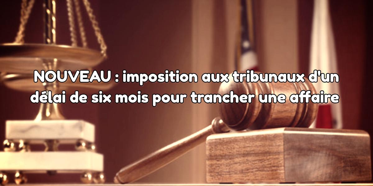 Reforme législative : imposition aux tribunaux d'un délai de six mois pour trancher une affaire